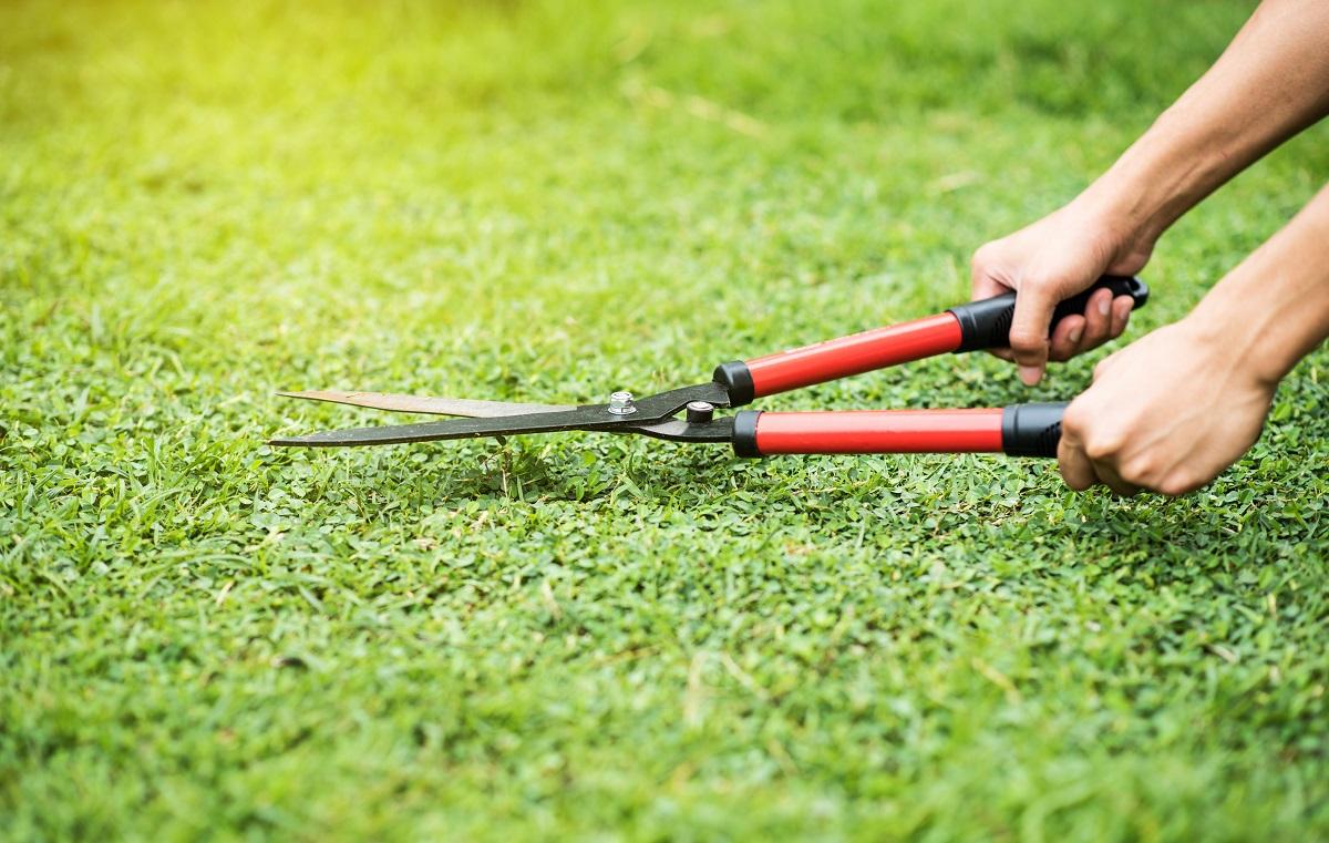 Gardener cutting grass